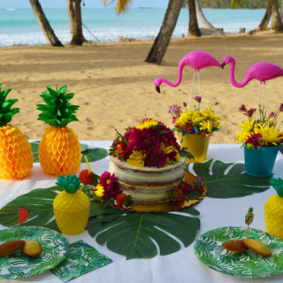 A breezy easy beautiful tropical birthday party